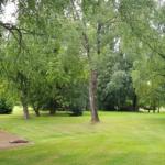 Parc boisé